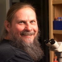 Profile photo of Steven Edward Ealick, expert at Cornell University