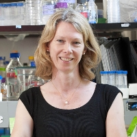 Profile photo of Victoria Prince, expert at University of Chicago