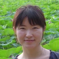 Profile photo of Wei Wei, expert at University of Chicago