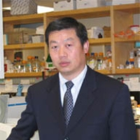Profile photo of Weihong Song, expert at University of British Columbia