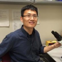 Profile photo of Xiaoxi Zhuang, expert at University of Chicago