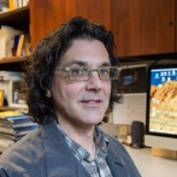 Dr. James Dignam