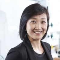 Profile Photo of Shirley Tang