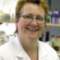 Lynn McMullen, University of Alberta